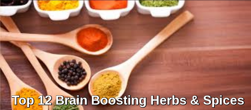 Brain Boosting Herbs & Spices - Cover